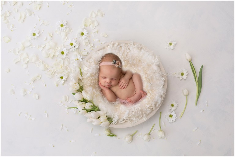 Newborn Photography Naperville